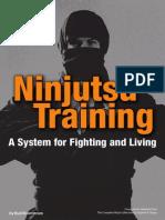 Ninjutsu Training Guide