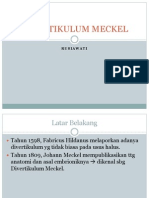 Ref Divertikulum Meckel