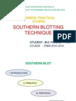 southern blotting technique