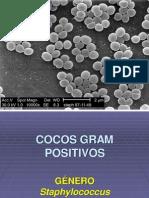5ta clase de.Staphylococcus.pptx