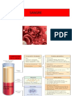 8. fisiopatologia de la sangre.pdf