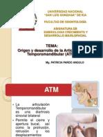 7 Clase Embrio (4)