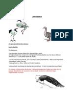 Bio Oiseaux