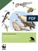 Guía de Aves Comunes de Segovia (España)