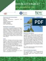 Vernonia_factsheet
