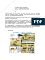 Conceptos a Fines a La Ecologia