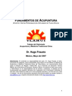 Fundamentos Acu Frausto