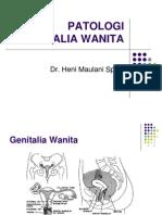 Kuliah Vulva-Vagina
