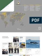 Rosneft Annual Report 2013.pdf