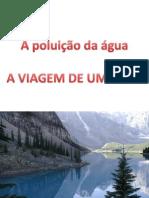7837067-Poluicao-Da-agua-A-Viagem-Do-Peixe.pdf