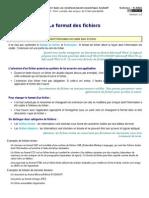 D1.3.1 FormatsFichiers