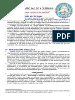 1.-Subsidio-Vocacional-de-Marilia--o-que-e-a-PV-.doc