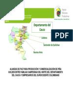 Pina Quilichao Resumen