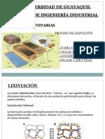 Lixiviación presentacion