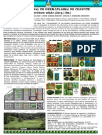 BANGESe 12 NOV 2007 SIRGEAL.pdf