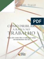 Como Driblar a Raiva No Trabalh - Luiz Gabriel Tiago