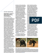 Carvalho Et Al. 2012 Chimpanzee Bipedal Carrying Behaviour