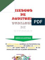 Riesgos y evidencia de auditoria.ppt