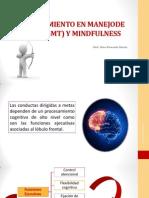ENTRENAMIENTO DE ESTRATEGIAS DE METAS Y MINDFULNESS.pdf