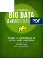 Executive Guide to Apache and Hadoop