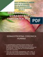 Determinacin de gonadotropina corinica humana.pptx