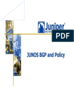 06-Junos Bgp and Policy