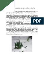 Plante si animale iarna geroasa.doc
