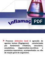 4 Inflamacao Completa A