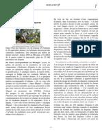 México, el cementerio de los desaparecidos (PDF)