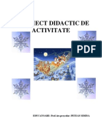 Proiect Didactic de Activitate