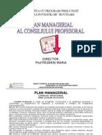 C.P.- Plan Managerial 2014-2015