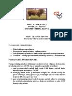 Patogeneza Postpartalnog Endometritisa Krava - Dr Stevan Perkovic