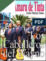 LOS AMARU DE TINTA
