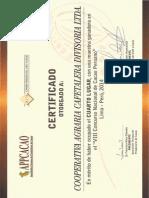 Certificado Mejor Cacao Cadmio