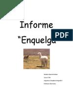 RECOPILACIÓN DE DATOS DE ENQUELGA  (Maricel Esteban EIB)