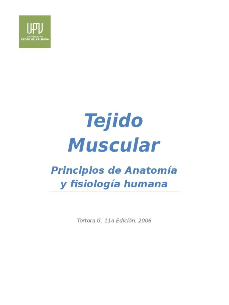 Fantástico Anatomía Y Fisiología De Los Libros De Texto En Línea ...
