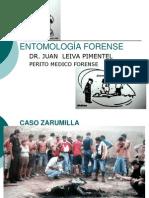 entomologaforense-100702202920-phpapp02.pdf