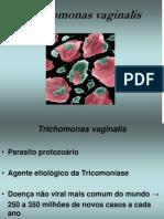 Aula 16 - Trichomonadídeos