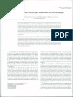 diseño de redes neuronales.pdf