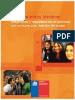 Lineamientos_Tecnicos_VF2