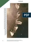 Cox jaskey malik eds realism materialism art noumenon animism volume i book ed anselm franke fandeluxe Image collections