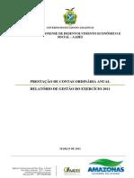 Relatrio_de_gestão__2011