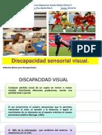 Discapacidad Sensorial Visual