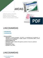 LINCOSAMIDAS Y ANSAMICINAS (PEPE).pptx