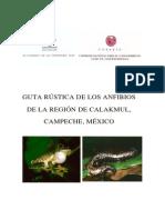 Guia de Anfibios Calakmul Campeche Mexico