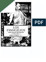 Los Evangelios - Loring