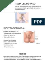 Anestesia Del Perineo