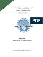 Glucolisis, Vaqueras.docx
