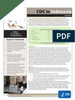 CDC Indonesia_malaria.pdf