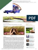El Sendero Del Mago_ Ejercicios de Meditación Para Perdonarse a Uno Mismo